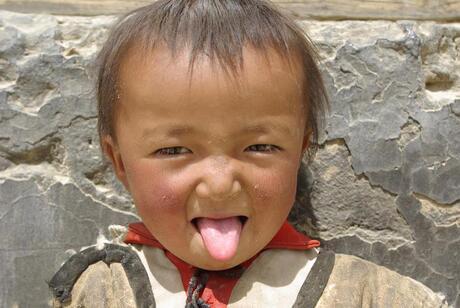 Tibetaans menneke