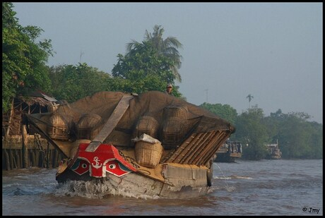 Mekong Delta I