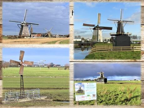 Collage voor Nat Molendagen 8 en 9 mei   Div Molen fotos uit 2021