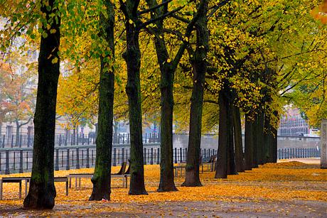 Lustgarten in Berlijn.