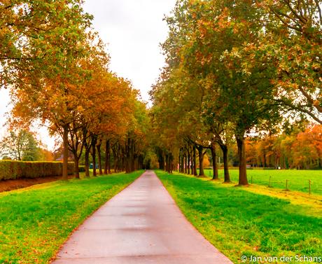 Herfst 1
