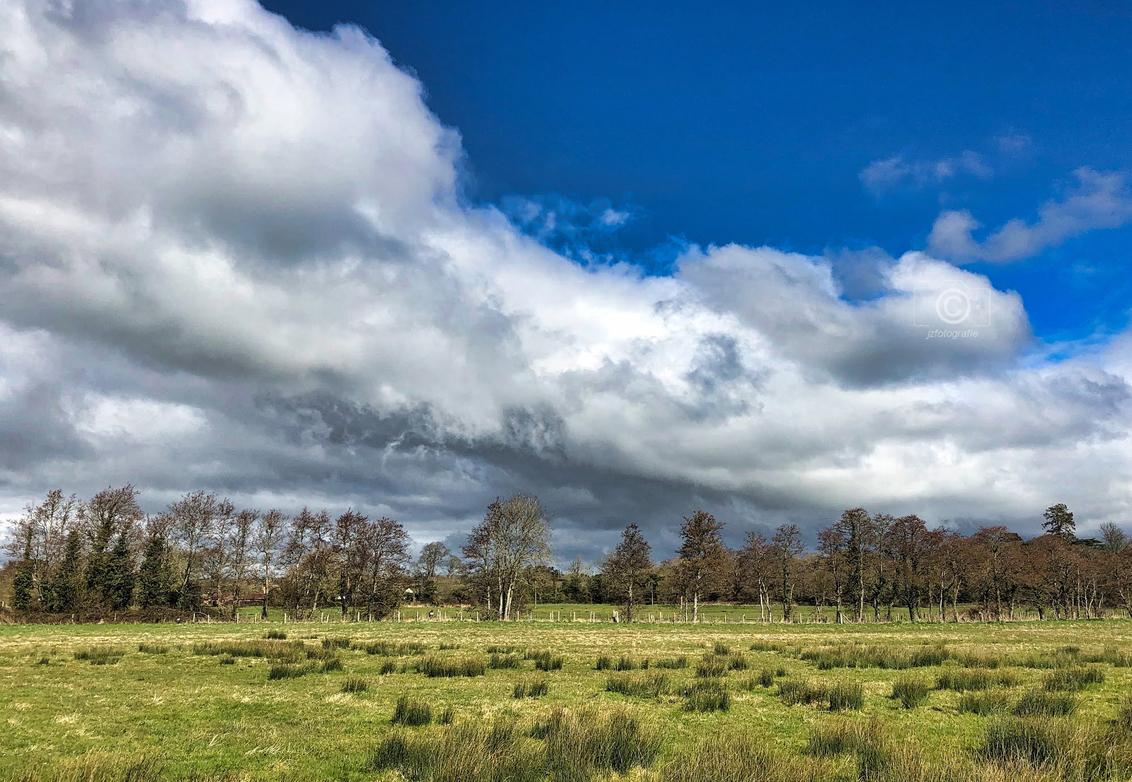 Landschap in N-H - Een opname gemaakt tijdens één van mijn wandelingen in de omgeving van de Waterleiding Duinen.  Zoomers , bedankt voor de vele mooie reacties en fa - foto door jzfotografie op 04-04-2021 - deze foto bevat: groen, wit, blauw, natuur, landschap, natuurgebied, bomen, luchten, ruimte, nederland, camera, veld, vrijetijd, sony, contrasten, n-h, wandelingen