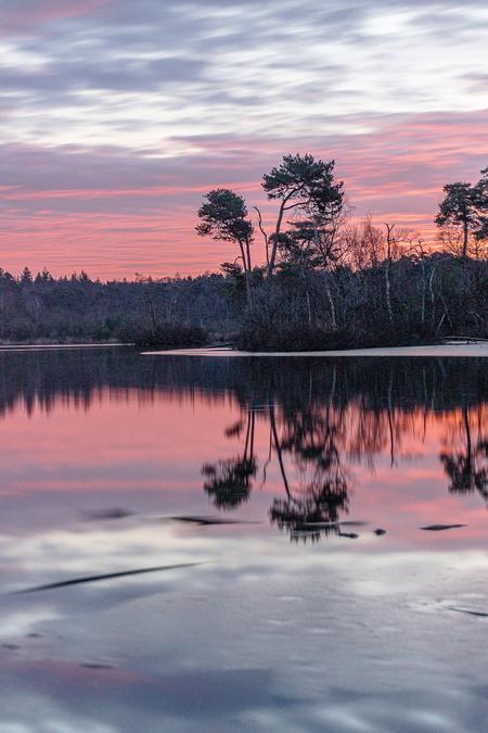 Red Velvet ❤️ - Prachtige ochtend met de roodgekleurde lucht! Heb ditmaal eens lange sluitertijd gebruikt, met gebruik van een ND filter en Grijsverloopfilter! Zo ho - foto door Alex-Maas1 op 27-02-2021 - deze foto bevat: lucht, wolken, zon, water, natuur, licht, spiegeling, landschap, bos, tegenlicht, zonsopkomst, bomen, meer, lange sluitertijd