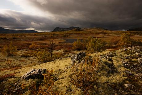 Alvdal, Flatsetra, Noorwegen.