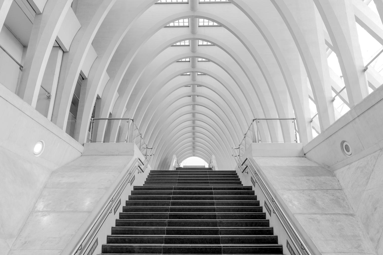 station luik - station luik - foto door lianedeprost op 10-04-2021 - deze foto bevat: station luik, zwart wit, architectuur, armatuur, architectuur, lijn, symmetrie, samengesteld materiaal, parallel, tinten en schakeringen, trap, monochrome fotografie, bouwmateriaal