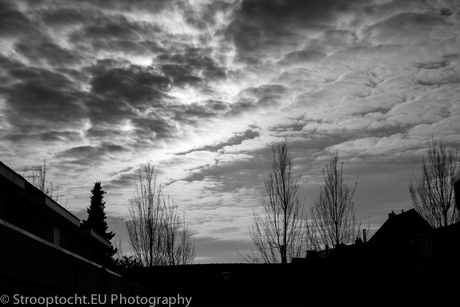B&W the sky from behind