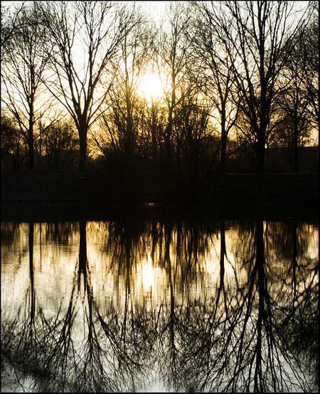 Zonsondergang - - - foto door annemariekol op 21-03-2009 - deze foto bevat: zon, natuur, avond, zonsondergang, reflectie, avondlicht, bomen, weerspiegeling