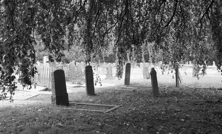 Oude stadsbegraafplaats Leeuwarden - - - foto door Lucy-Stienstra op 28-10-2020
