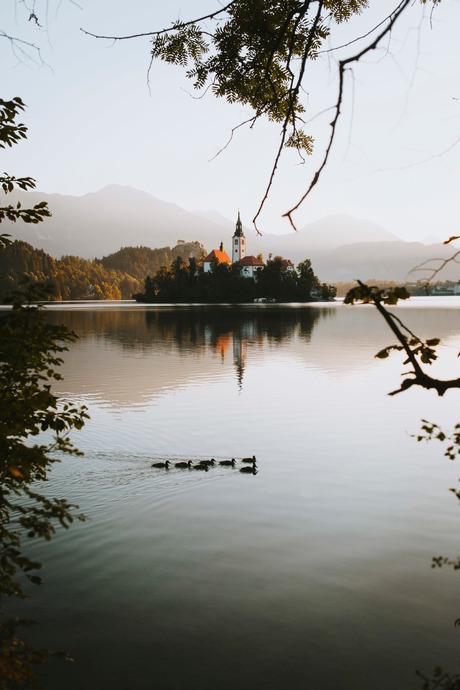 Magical morning on Lake Bled