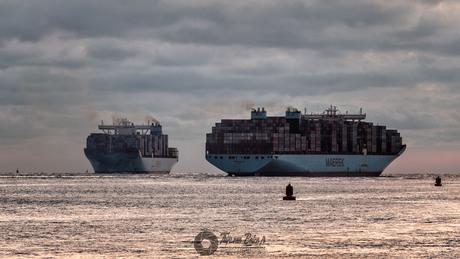 Maersk Mayview & Maersk Maribo