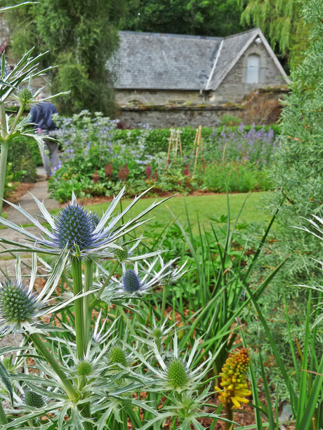 The Garden House (Buckland Monachorum , Devon )