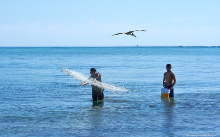 Watch the catch - - - foto door jeroenkleiberg op 03-01-2018 - deze foto bevat: lucht, mensen, zon, strand, zee, natuur, portret, vogel, vissen, reizen, net, amerika, visser, mexico, reisfotografie