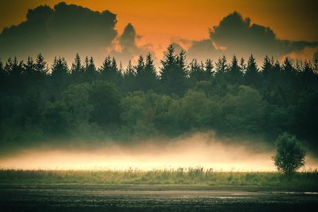 SKFotografie-Mepper hooilanden