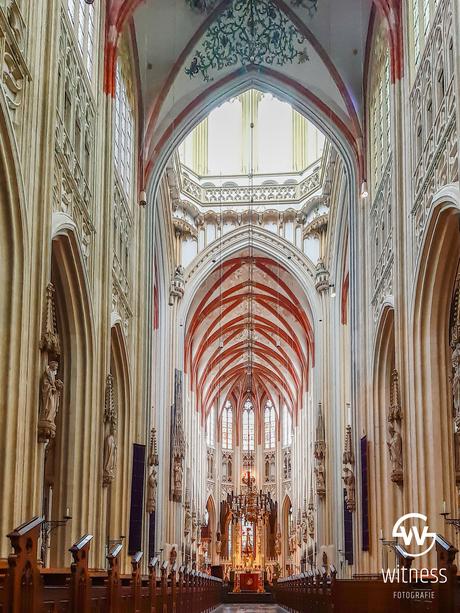 Sint -Jans Kathedraal van binnen