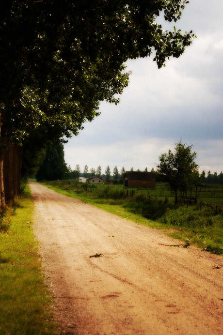 country-farm-road