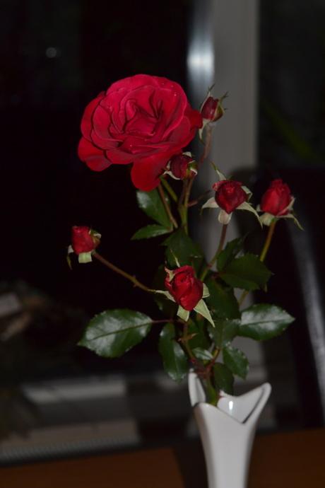 Trosje rozen uit de tuin.
