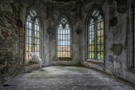 God's Window