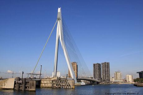 Erasmus Brug Rotterdam.