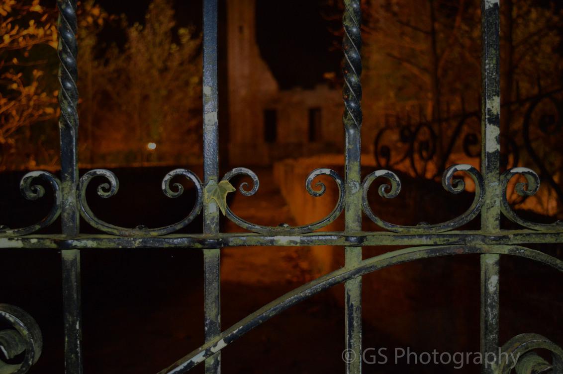 Toegangspoort Kasteel Ter Elst - Toegangspoort naar Kasteel Ter Elst in Duffel. - foto door gwenvg1991 op 28-11-2014 - deze foto bevat: abstract, kasteel, avond, nacht, poort, belgie
