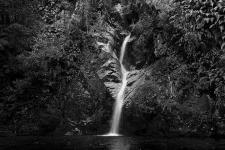 Nieuw - Zeeland 198