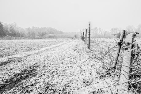 Februari Sneeuw
