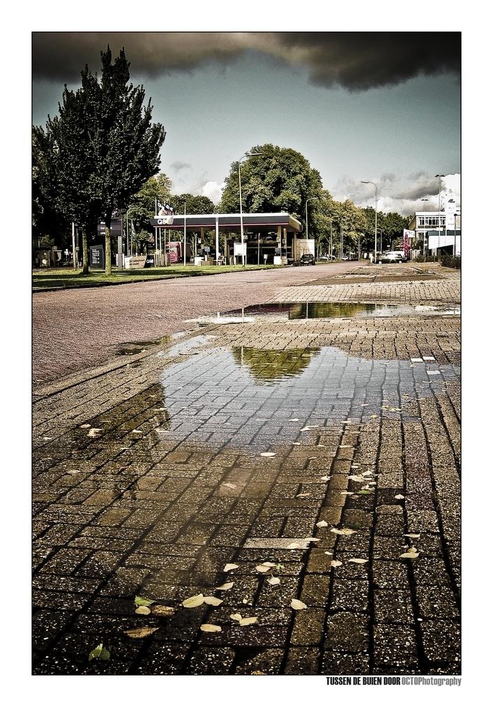 Tussen de buien door - - - foto door Octo op 07-10-2008 - deze foto bevat: regen, herfst, utrecht, plas