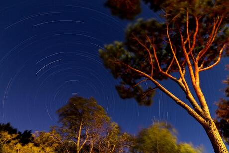 Windy star trails