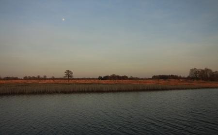 De avond valt in de Weerribben - Achter mij gaat langzaam de zon onder en aan deze kant verschijnt de maan. Foto is gemaakt in het prachtige gebied van het Nationaal park de  Weerrib - foto door manon-3 op 19-02-2019 - deze foto bevat: natuur, landschap, maan, weerribben, overijssel, rietveld
