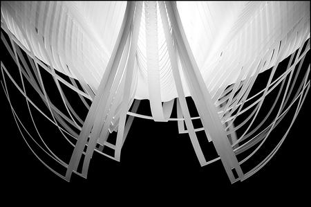 ddw-07 - Er zijn designers die wel heel erg goed naar moeder natuur kijken en zich daardoor laten inspireren. Zo was er een ruimte tijdens de Dutch Design Wee - foto door mphvanhoof_zoom op 30-12-2013 - deze foto bevat: licht, lamp, kunst, eindhoven, art, vormgeving, verlichting, mystiek, constructie, design, onderwaterwereld, onderwaterleven, lichtobject, ontwerpen, zwart wit, ontwerpers, dutch design week, industrieel ontwerp