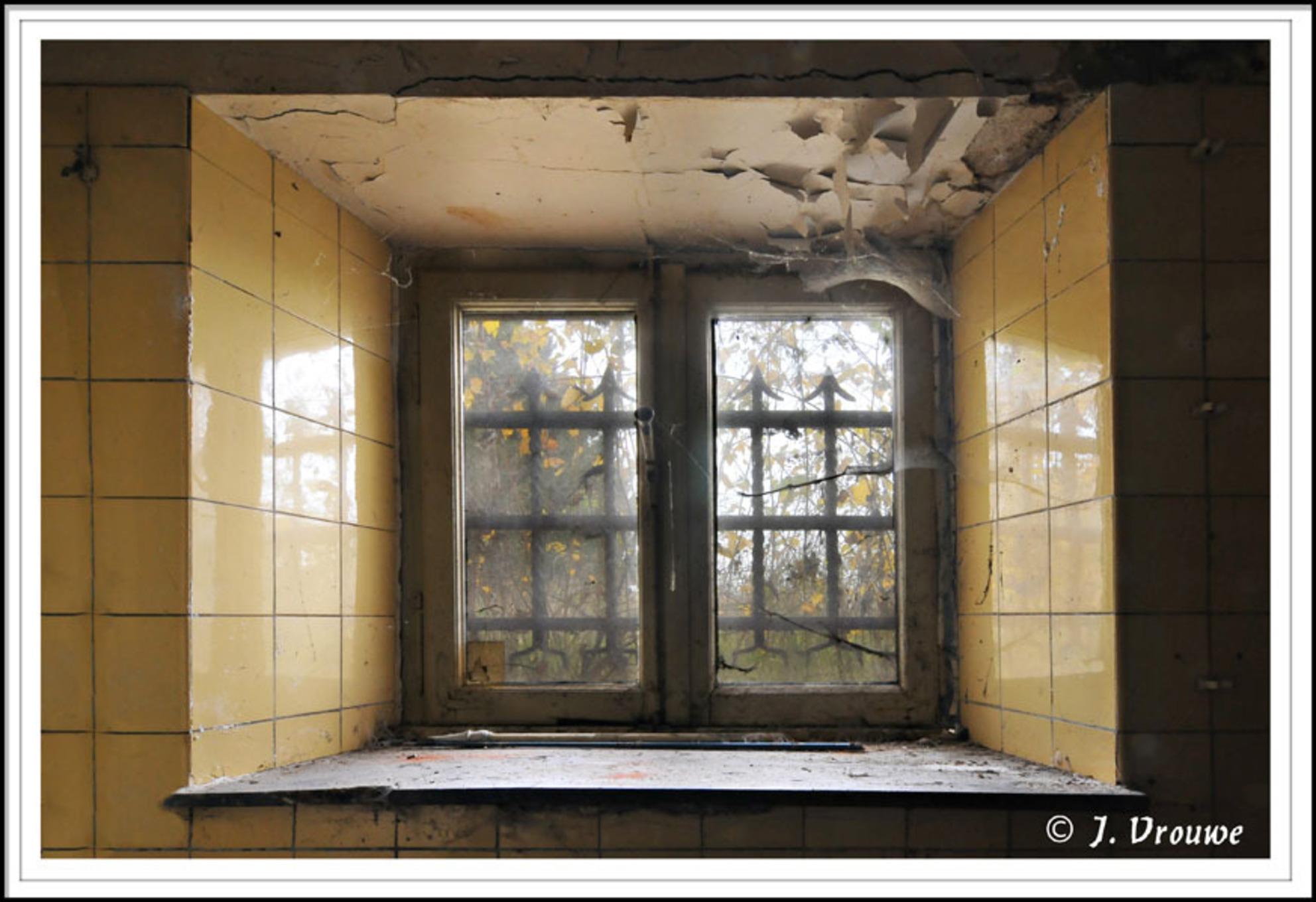 vuil raam - foto gemaakt in de kelder van een oud klooster - foto door janv2 op 21-01-2014 - deze foto bevat: ramen, spinrag, raam, urban, hekwerk, klooster, venster - Deze foto mag gebruikt worden in een Zoom.nl publicatie