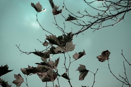 -oktober-