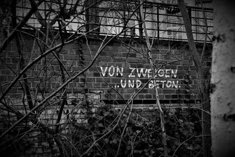 Berlijnse muur, rake teksten
