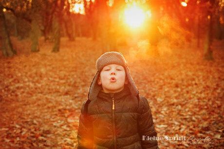 Koud golden hour