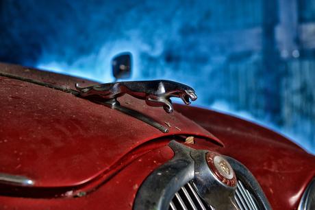 The old Jaguar