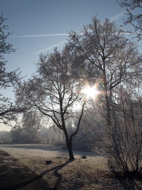 Winter December 2007