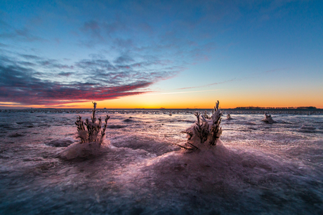 magisch winter zonsopgang