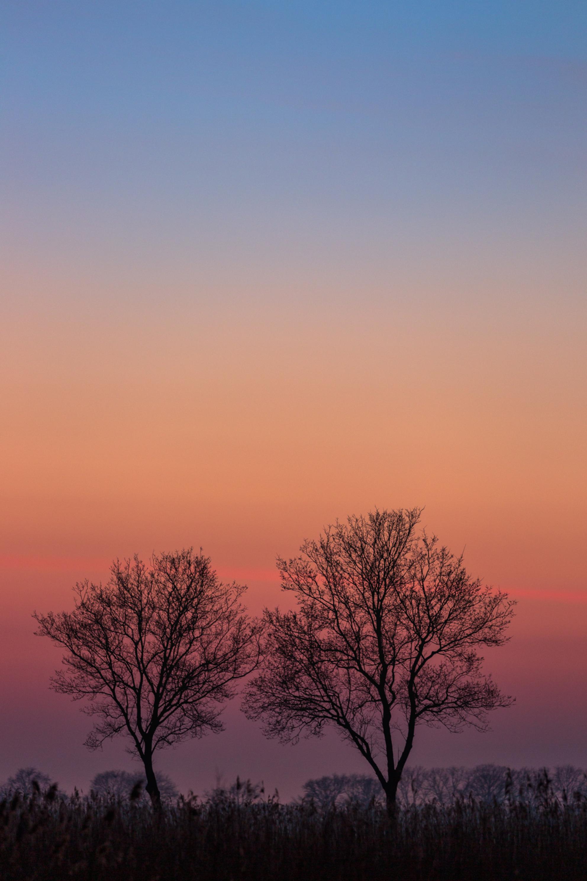 blauwe uurtje - Naast een prachtige sneeuwmaan in het oosten zorgde de het blauwe uurtje aan de westkant voor prachtige kleuren. - foto door gertjanketel op 28-02-2021 - Deze foto mag gebruikt worden in een Zoom.nl publicatie