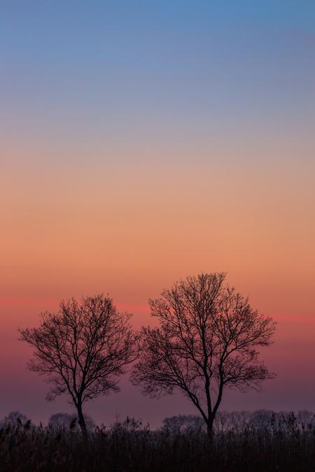 blauwe uurtje - Naast een prachtige sneeuwmaan in het oosten zorgde de het blauwe uurtje aan de westkant voor prachtige kleuren. - foto door gertjanketel op 28-02-2021
