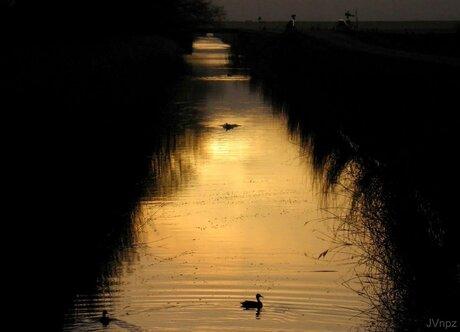 zonsopkomst over het water