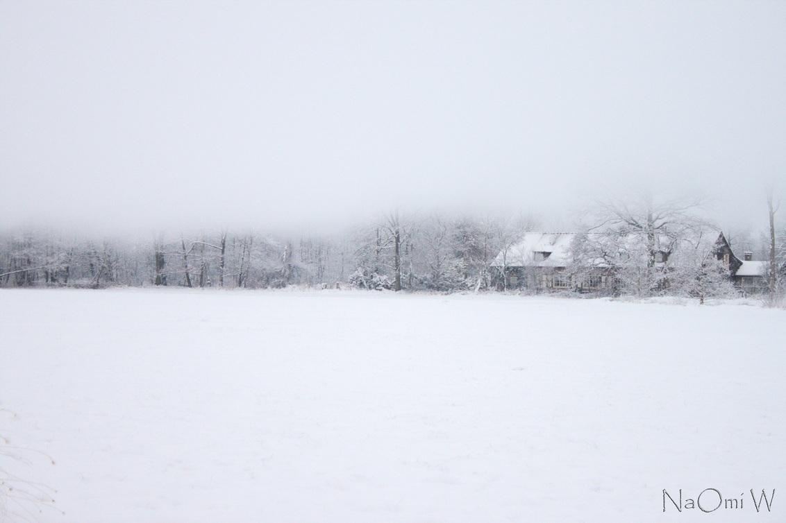 Streep zicht - _MG_3293 -1.jpg - foto door NaOmiW op 01-12-2012