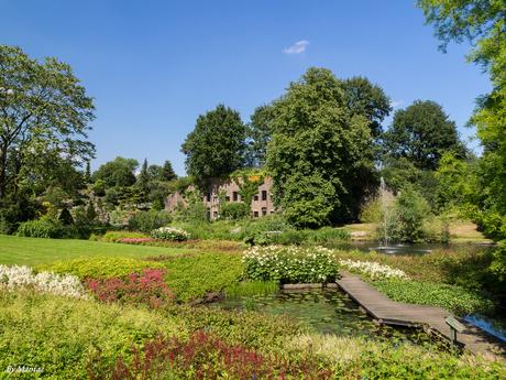 Botanische Tuinen - Utrecht