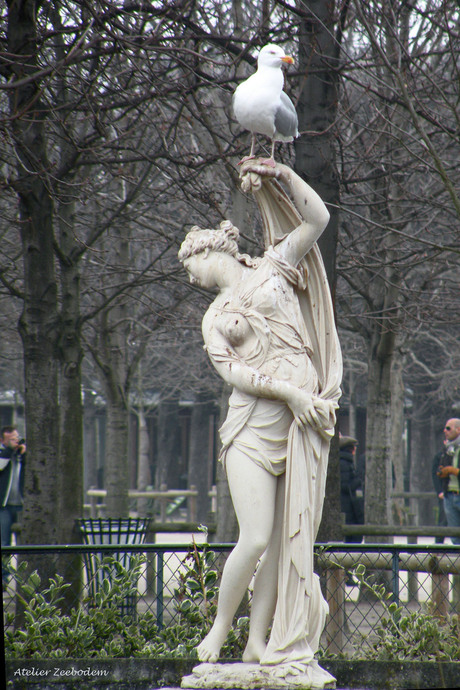 Vrouw met vogel