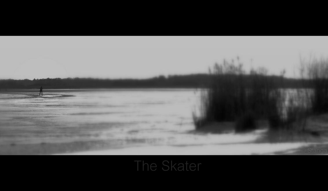 The Skater - Zuidlaardermeer!   ThanX voor de reacties op mijn vorige upload  Stan - foto door stanga op 16-02-2010 - deze foto bevat: stanga