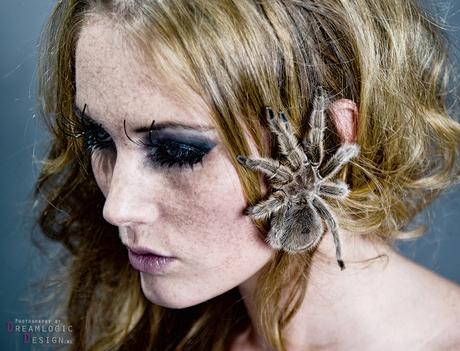 Diervrouwen: Spider-girl