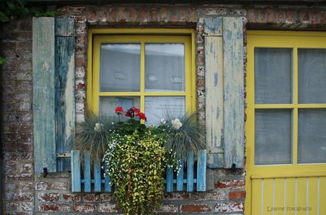 geel-blauw raam