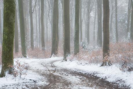 Oostereng-sneeuw 2.
