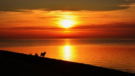 Leetah sunset silhouette a/h strand van Urk