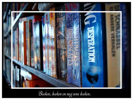 Boeken - Foto van de boekenkast, maar nu eens niet van de voor kant. - foto door spitsoor op 16-12-2009 - deze foto bevat: boek, perspectief, boeken, kast