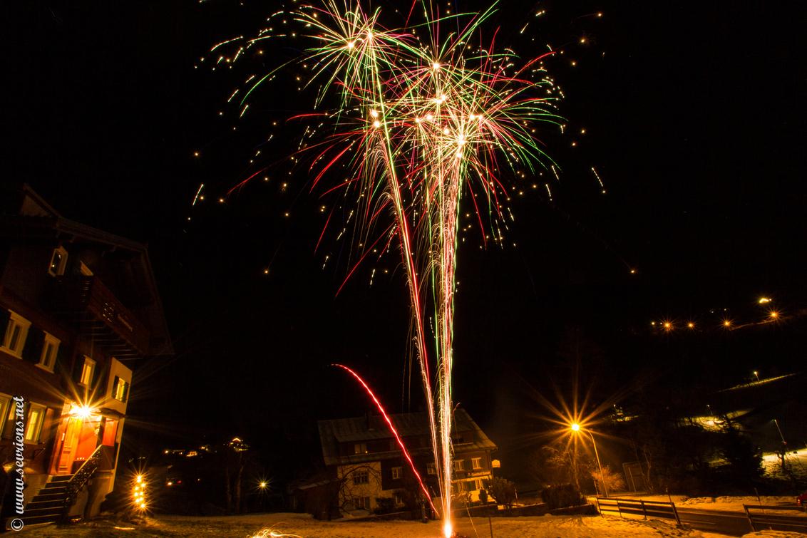 Spetterend 2014 ! - Iedereen een spetterend 2014 toegewenst! - foto door lucsevriens op 15-01-2014 - deze foto bevat: vuurwerk, nacht