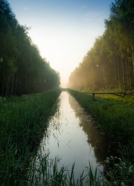 Lijnen in het landschap